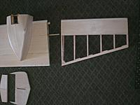 Name: Wing center and tip.jpg