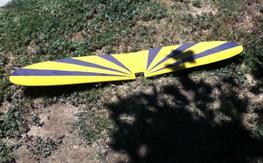 Rascal wing