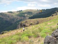 Name: IMG_1912 (Large).jpg