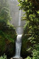 Name: DSC_0347_DxO_raw (Large).jpg