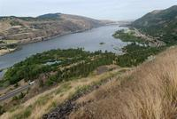 Name: DSC_0521_DxO_raw (Large).jpg