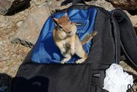 Name: DSC_0657_DxO_raw (Large).jpg