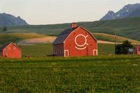 Name: DSC_0792_DxO_raw (Large).jpg