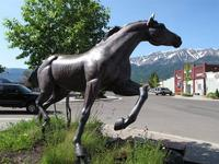Name: IMG_2296 (Large).jpg