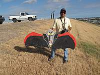 Name: IMG_2849 (Large).jpg