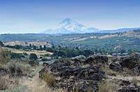 Name: DSC_5082_DxO (Custom).jpg
