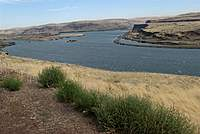 Name: DSC_5101_DxO (Custom).jpg