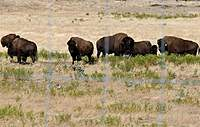 Name: DSC_5125_DxO.jpg