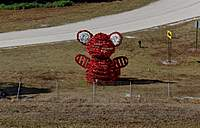 Name: DSC_6934_DxO (Custom).jpg