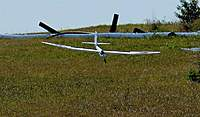 Name: DSC_7116_DxO (Custom).jpg Views: 94 Size: 115.0 KB Description: Radian Pro on landing.