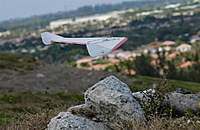Name: DSC_7217_DxO.jpg