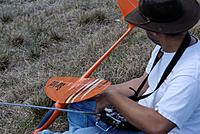 Name: DSC_1339_DxO (Custom).jpg