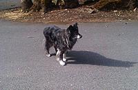 Name: IMG00378-20120606-0845 (Custom).jpg