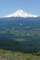 Name: DSC_0742_DxO.jpg