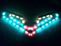 Name: Night flyer.jpg