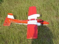 Name: Twinstar at the field.JPG