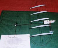 Name: P2010111.jpg