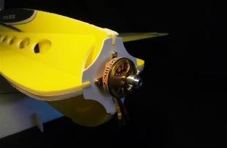 Rimfire 250 brushless outrunner motor.