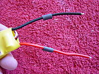 Name: DSC00256.jpg