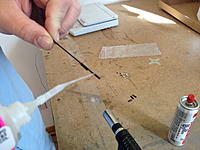 Name: IMG_1072.jpg