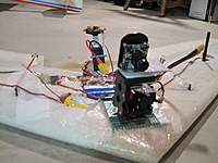 Name: IMG_8302-1000.jpg