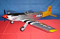 Hangar P-51 PTS Trainer