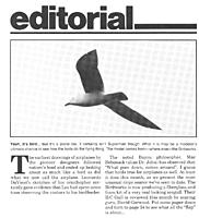 Name: FM19935Editorial.jpg
