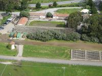 Name: Polo2.jpg
