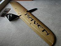 Name: P1010454.jpg