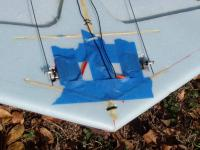 Name: kferret_top_cl.jpg