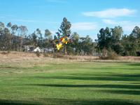 Name: RC Flying 10-25-09 016.JPG