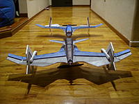 Name: SS850987.jpg