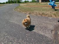 Name: HPIM0698.jpg