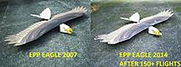 Name: Eagle 200714.jpg