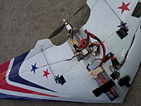 Name: Dougs Wing.jpg