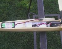Name: thorn32.jpg