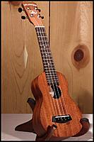 Name: islander_ms-4_5_copy.jpg