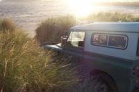 Name: Dcp_0019.jpg