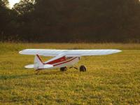 Name: hl_supercub_34.jpg