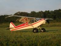 Name: hl_supercub_35.jpg