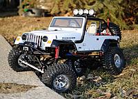 Name: jeep drive tree small.JPG