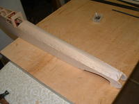Name: 100_FUJI-DSCF0006_DSCF0006.jpg