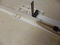Name: DSCN1356.jpg