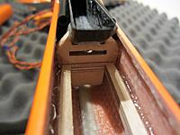 Name: Fosa (60)sm.jpg