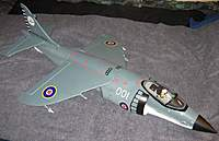 Name: Harrier 1.jpg