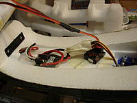 Name: P-40 Build 003.jpg