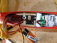 Name: P1010593.jpg