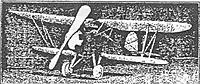 Name: Tomasco Bird Biplane dime scale 15 inches illlust.jpg
