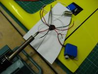 Name: IMG_7891.jpg