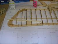Name: DSCN3700.jpg